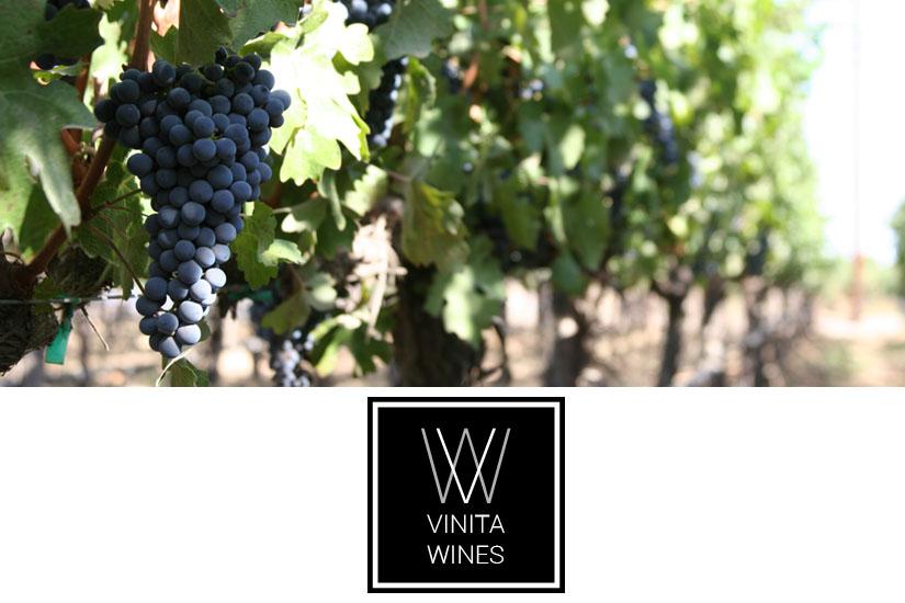 Bodegas Vinita Wines